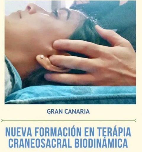 Nuevo_curso_Gran_Canaria_2020