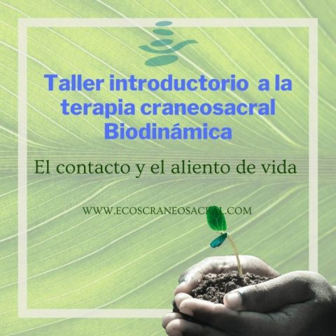 Talleres_Introductorios_2021